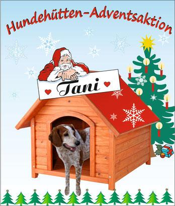 Klick aufs Bild - und alles Wissenswerte über Tani öffnet sich!