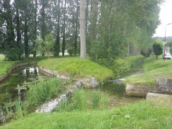 Le site du vannage de Ste Beuve en Rivière 2ans après les travaux de RCE