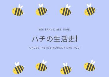 ハチの生活史と書いているイラスト