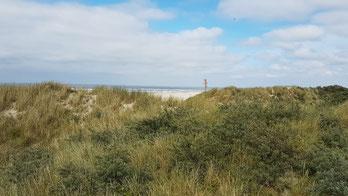 Juist Dünen, Ostfriesische Inseln, Nordsee