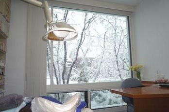 診察室から見える窓の風景