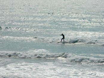 今日は午後から波はサイズアップしましたが、風が強かったです。