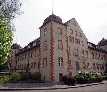 Das Wasserschloss in Flehingen – Titelbild von Rundbrief 53