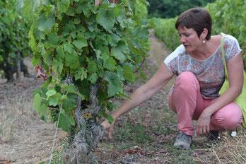 Myriam-Fouasse-Robert-guided-wine-tours-tastings-Loire-Valley-vineyard-Vouvray-Touraine-Tours-Amboise-Rendez-Vous-dans-les-Vignes