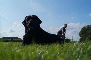 Inhaber der Hundeschule Asmann