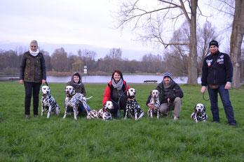 Bianca mit Sonic, Judy mit DaVinci, Joanna mit Amy und Jill, Daniel mit Rosa und Jens mit Pepper (v.l.n.r.)