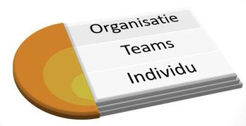 Organisatie - teams - individu