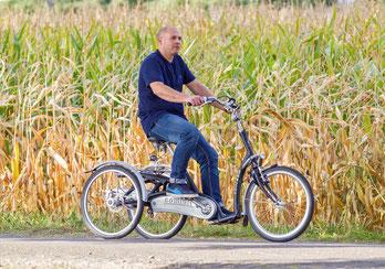 Van Raam Maxi Comfort Dreirad Elektro-Dreirad