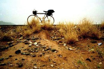 mein Rabeneick in der Tiham-Wüste von Yemen