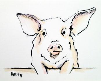 Glücksschwein, 2014, Aquarell, 16 cm x 12 cm