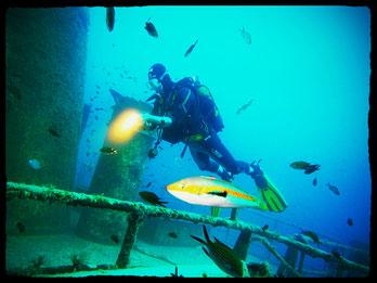 Gozo Comino Wreck for the Adventurer Diver