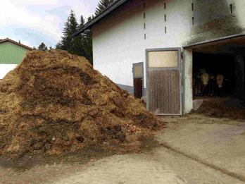 Biogas aus Stall  Kälber  - Pferde Mist