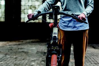Mehr über Mechanik von Trekking e-Bikes bei einem Beratungsgespräch erfahren