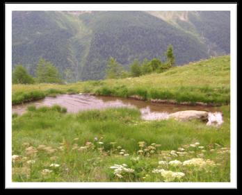 L'étang d'Arbä, © hepia