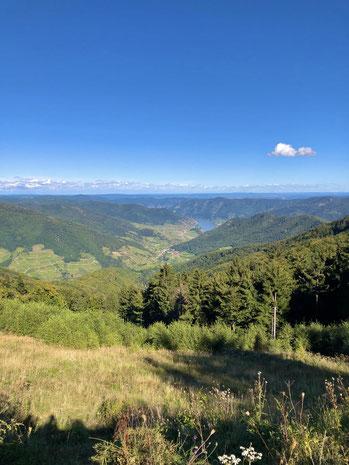 Der Jauerling Berg in Niederösterreich schöne Aussicht von der Hütte zur Donau in der Wachau.