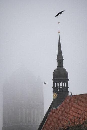 sankt st jacobi heilgeist kloster hansestadt stralsund nebel herbst november mecklenburg vopommern heimatlicht fotografie geschichte heimat ostsee urlaub ausflug moody