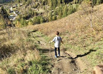 Feld, Wiese, Wandern, Leukerbad, Schweiz, Wallis, Berge, Hiking