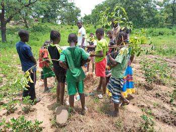 Kinder werden für die Bedeutung der Pflanzen sensibilisiert