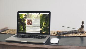 Cikitsa Website