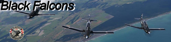 Black Falcons is the aerobatic display team of the Royal New Zealand Air Force Beechcraft T-6 Texan II RNZAF