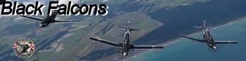 Black Falcons is the aerobatic display team of the Royal New Zealand Air Force Beechcraft T-6 Texan II RNZAF
