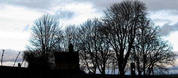 Eine Kapelle inmitten von Weinbergen