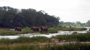 Galana River