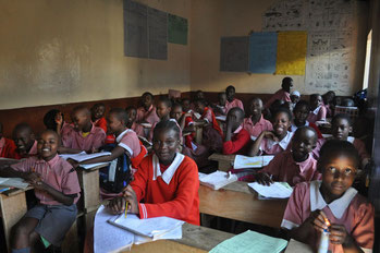1,9 milioni di kenioti tra i 5 e i 17 anni sono lavoratori, il 12, 7% dei quali non è mai andato a scuola.