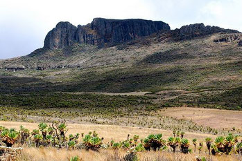 Parco Nazionale Monte Elgon