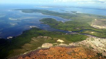 Mangrovie estese e intatte intorno a Pate Island