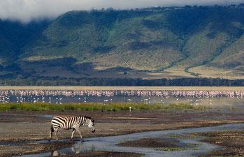 Ngoro Ngoro Conservation Area