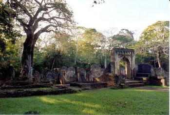 Rovine di Gedi, un esempio di architettura Swahili.