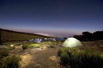 Trekking Kilimanjaro National Park