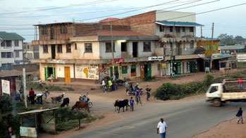 Kakamega - Kenya