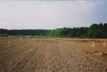 Acker in Schwabach - Eichwasen auf dem das Vereinsgelände entstanden ist.