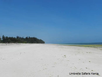 Urlaub in Kenia am Diani Beach