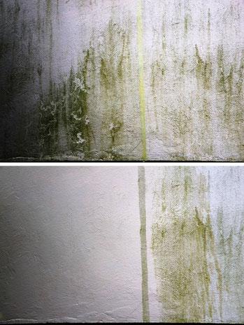 Muster Fassadenreinigung