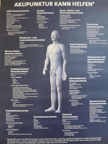 Bild: Übersicht Akupunktur