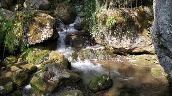 Fließendes Wasser über Steine