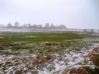 Recherche Moor