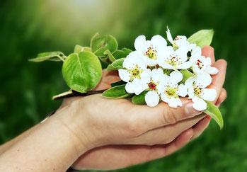 Naturheilkunde und Pflanzenheilkunde helfen gegen Depressionen