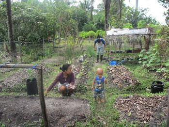 Ein Hausgarten im Projekt YUM