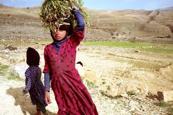 ein Mädchen hatte eine Portion Qat-Kraut gesammelt
