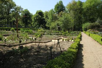Vue du jardin bouquetier et de l'hortus et du verger au fond