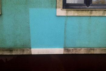 Fassade Algen reinigen