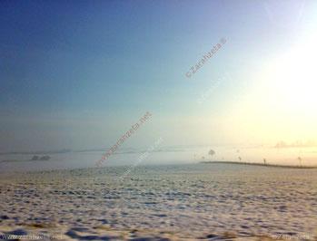 Schneelandschaft in Schleswig-Holstein