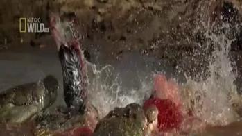 Selvaggio fiume di sangue