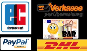 Onlin Shop EC,Paypal