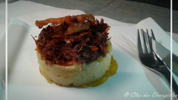Effiloché de canard et sa chartreuse de patate