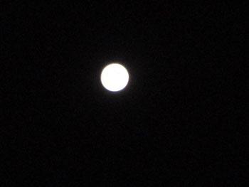 2020 10 31 来食の 宿からの満月